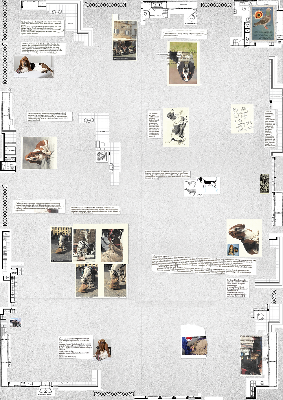 Dog Poster PNG 1613 x 2281 pixels.png