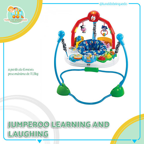 Jumperoo Learning and laughing