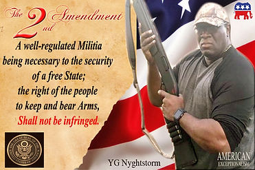 yg nyghtstorm 2nd amendment usa seal.jpg