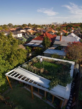 IMAGE: THE GREEN ROOF HAS BEEN NOMINATED FOR TWO VICTORIAN AIA AWARDS. (NEST ARCHITECTS)