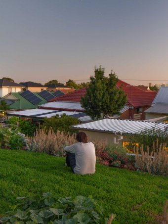 IMAGE: EMILIO FUSCALDO WATCHES THE SUNSET FROM HIS GREEN ROOF. (NEST ARCHITECTS)
