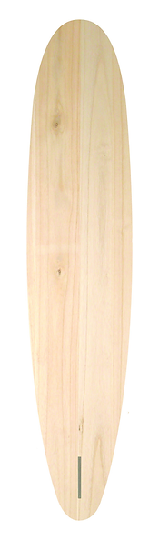 Wing_front_ct-02.png