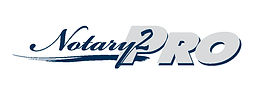 N2P Logo 2.jpeg