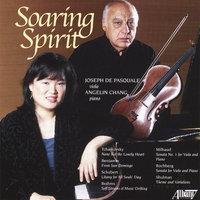 Soaring Spirit