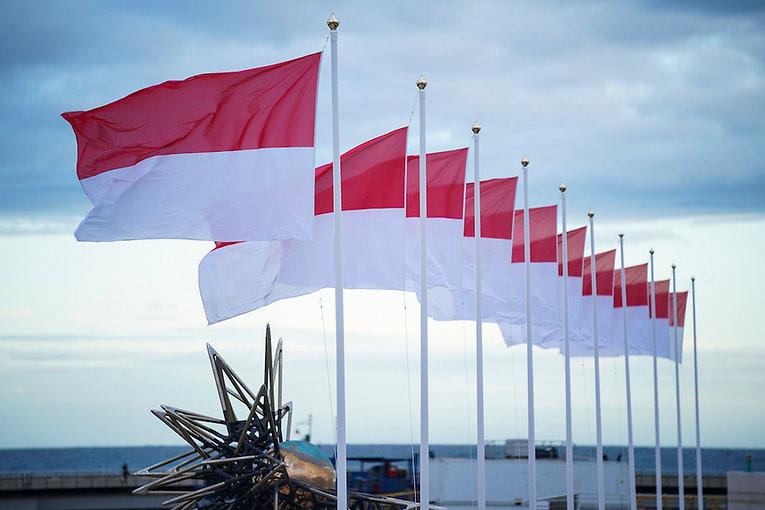 Drapeaux Monaco flags