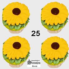 Cupcake 25.png