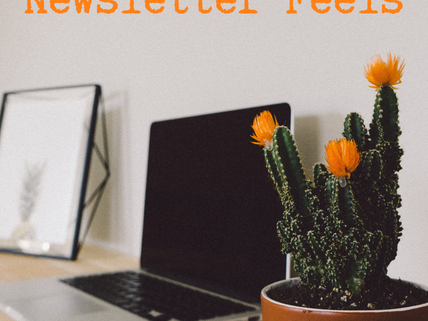 Newsletter feels