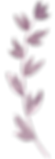 purple_leaf.png