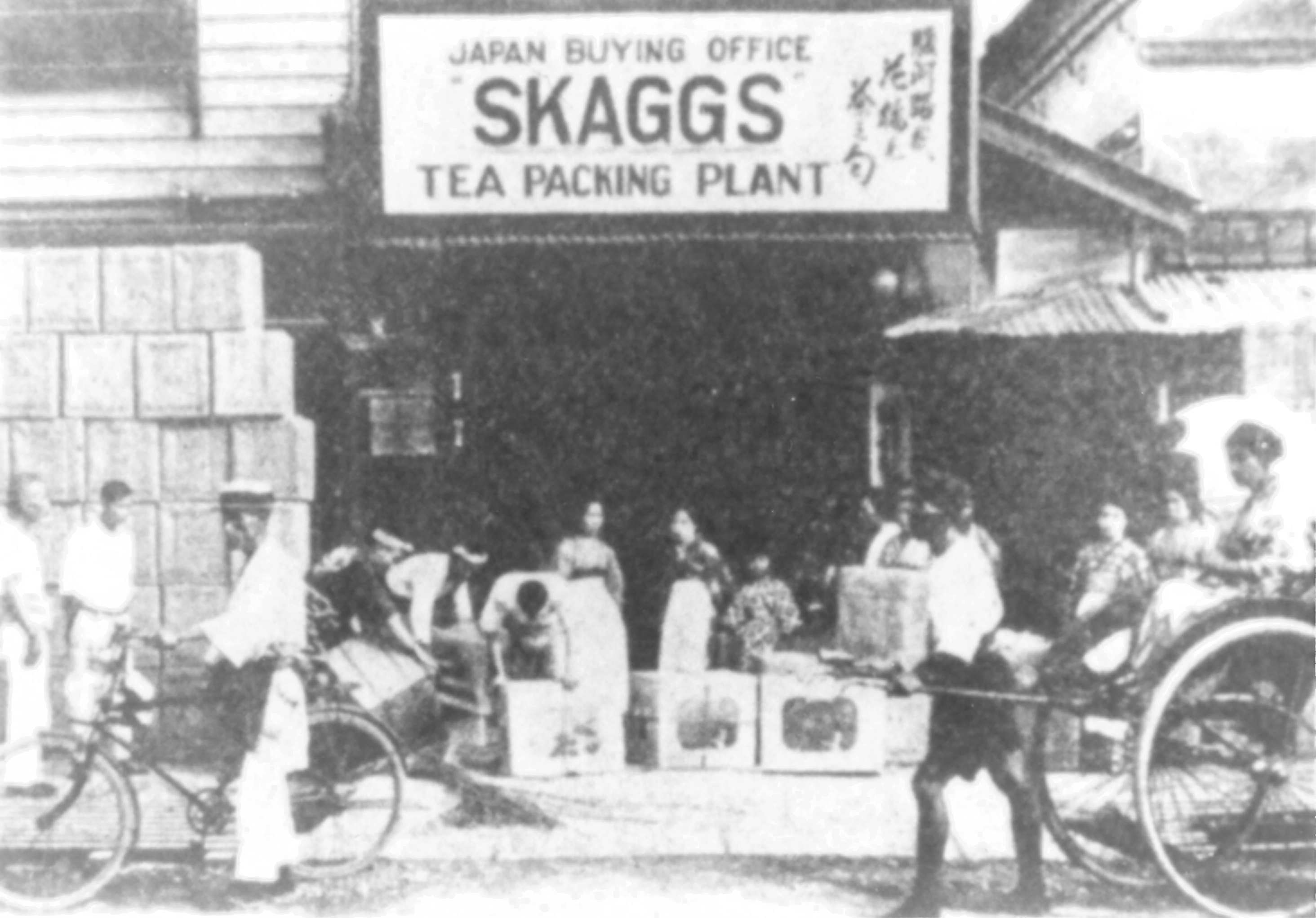 Skagg Tea Packing Plant