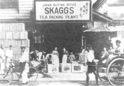 Skagg Tea Packing Plant