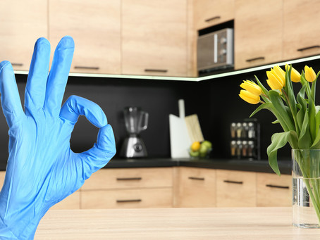 How To Keep Your Home Safe from Viruses and Germs