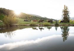 Miller Ranch Pond