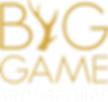 Big Game Strategies Logo