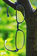 ulleres penjades arbreweb.jpg