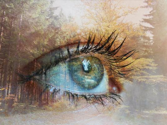 Método Bates, la terapia visual que ayuda a mejorar la visión