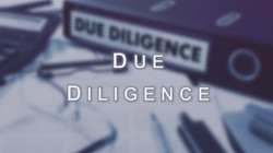12. Due Diligence