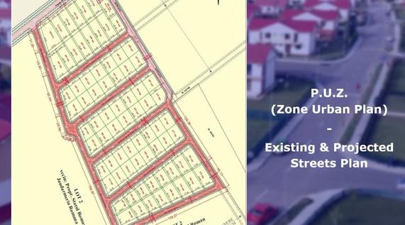 P.U.Z. Streets.jpg