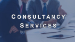 3.1  Consultancy Services