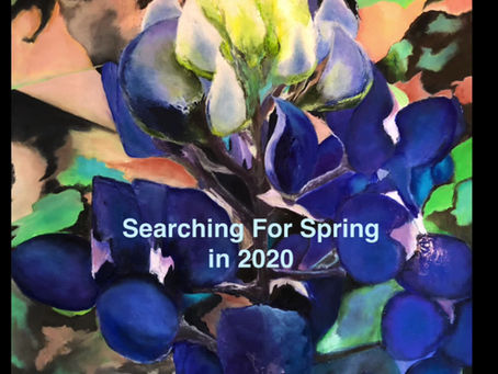 Searching For Spring in 2020