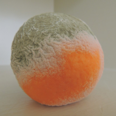 American Orange 1