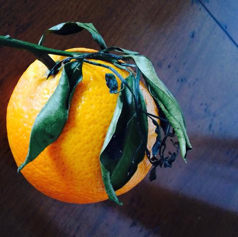 French Orange