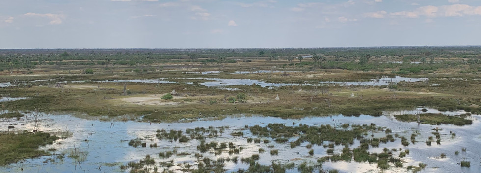 moremi helicopter flight.jpg
