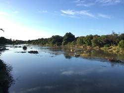 Limpopo River view