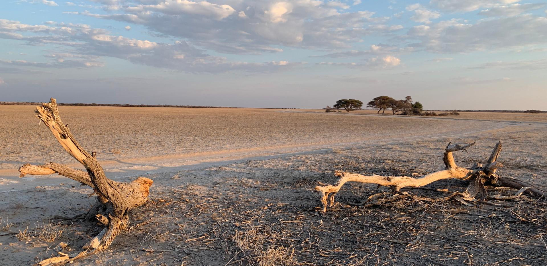 Central Kalahari Game Reserve salt pan