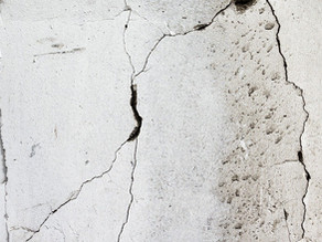 Mold Disclosure Laws for Landlords in California