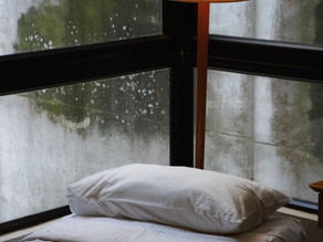 Are Mold Allergies Seasonal?