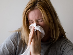 Six Ways to Reduce Mold Allergy Reactions