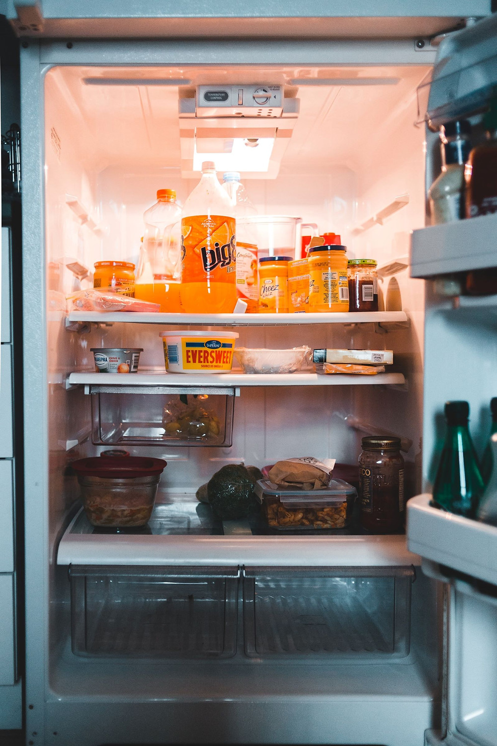 mold in refrigerator, how to get rid of mold in refrigerator, moldy fridge, how to clean a moldy fridge