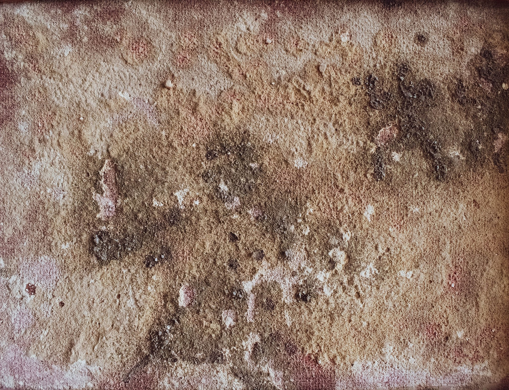 epa acceptable mold levels, what is a high mold count, mold concentration levels
