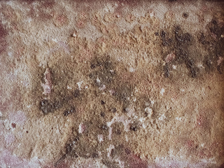 "What is ""Mold Load?"""