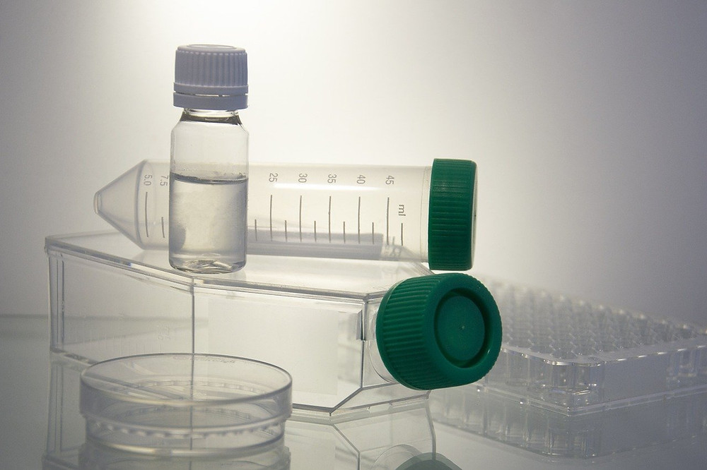 at-home mold test, are at-home mold tests reliable, are home mold test kits accurate, do home mold test kits work