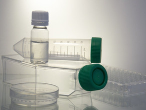 Are At-Home Mold Test Kits Reliable?