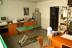 Clinique Vétérinaire l'Avenir : Consultation
