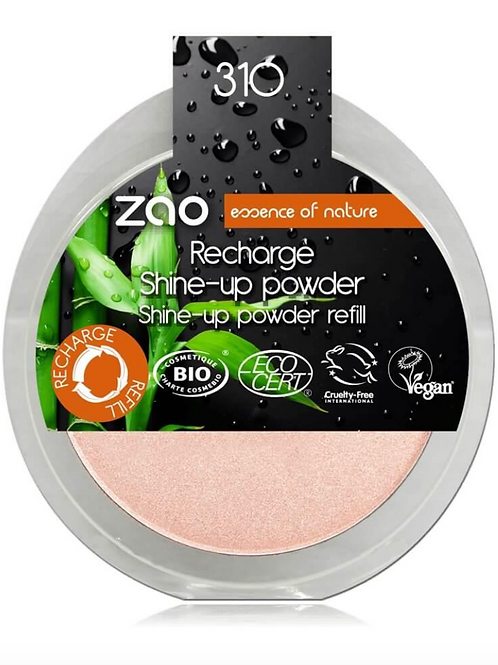 Recarga Shine Up Powder 310