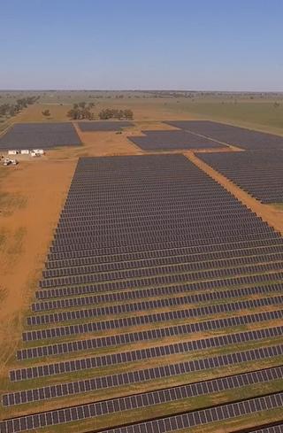 trundle-solar-farm-2png