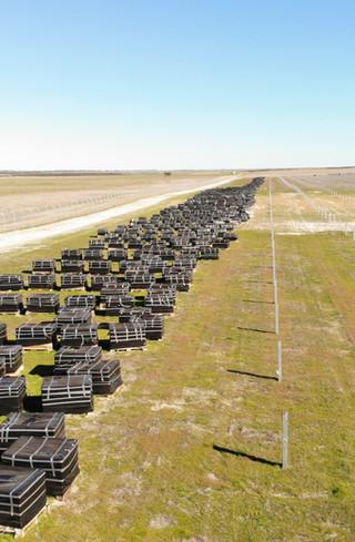 tranex-solar-greenough-river-solar-farm