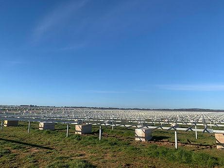 Molong Solar Farm_ Tranex Solar56.jpeg