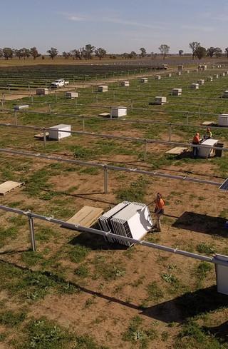 trundle-solar-farm-tranex-solar-9jpg