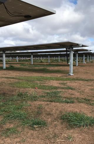 tranex-solar-coleambally-solar-farm
