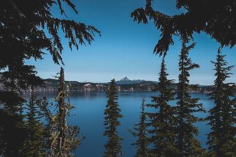 adventure-autumn-conifer-830965.jpg