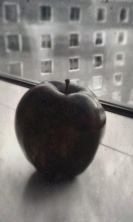Apple vs Windows (Chicago, Illinois)