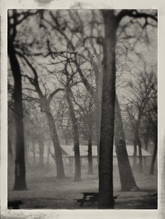 Singled Out (S. Island Park, Wilmington, Illinois)