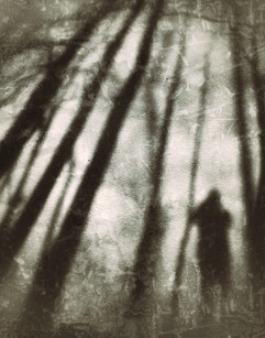 Into the Shadows (Yorkville, Illinois)