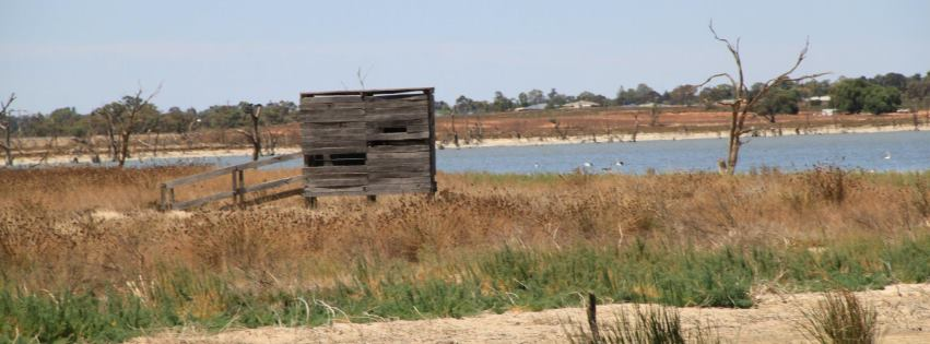 bird hide at lake hawthorn