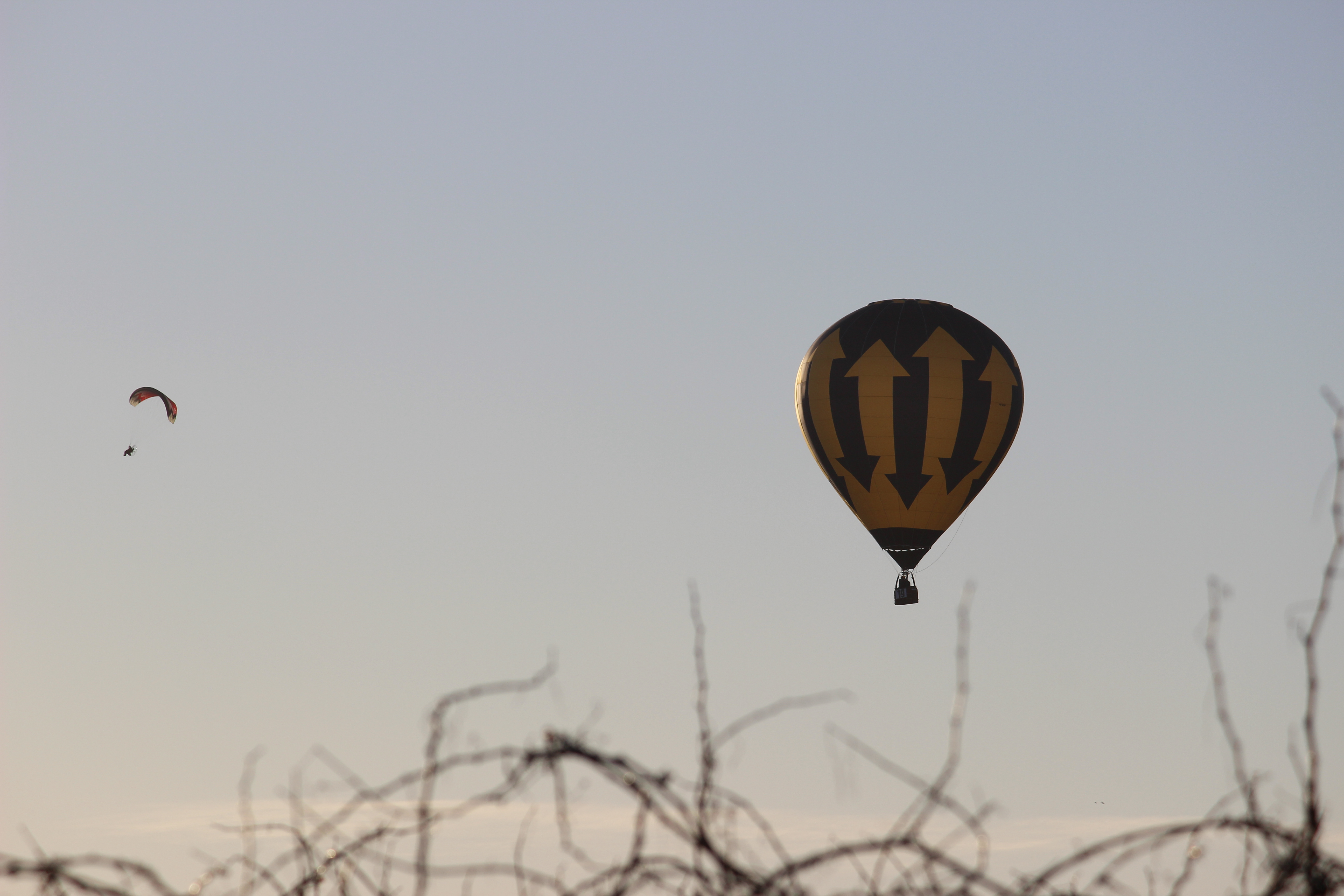 Cabarita hot air balloon