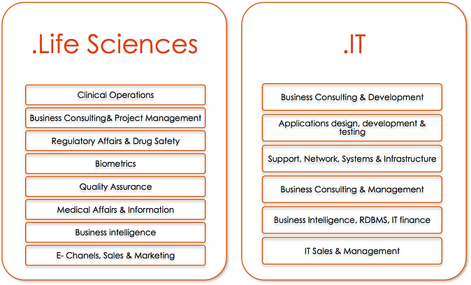 Recruitment Agency Life Sciences & IT